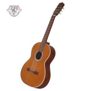 گیتار پارسی موزیک دلشاد فروش آنلاین لوازم موسیقی دلشاد فروش آنلاین