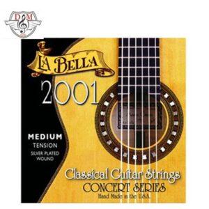 سیم گیتار 2001 کلاسیک موزیک دلشاد لوازم جانبی