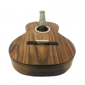 گیتار پارسی M3 موزیک دلشاد فروش آنلاین لوازم موسیقی فروش آنلاین