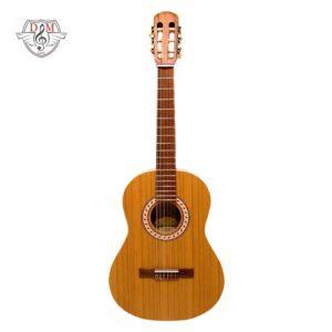 گیتار پارسی موزیک دلشاد فروش آنلاین لوازم موسیقی