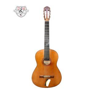 گیتار ایرانی موزیک دلشاد فروش آنلاین ساز و لوازم موسیقی گیتار دلشاد فرش گیتار