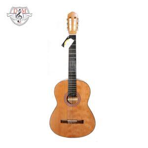 گیتار دلشاد طرح 5