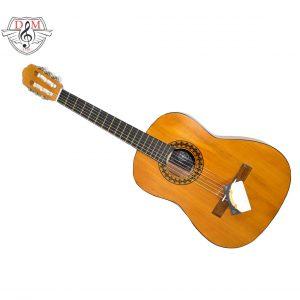 گیتار دلشاد 3 4