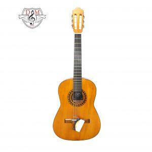 گیتار دلشاد 3 jpg2