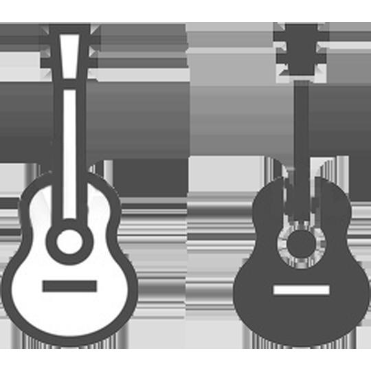 delshad guitars