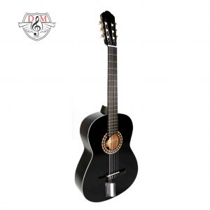 گیتار دلشاد مدل DM1 jpg1
