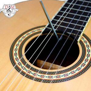گیتارسانتانا قهوه ای