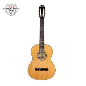 گیتار بست فان E160 jpg6