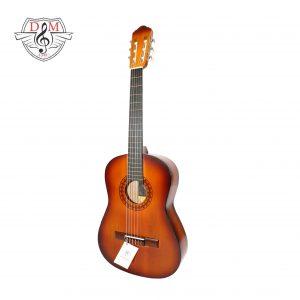 گیتار دلشاد 3 4 1