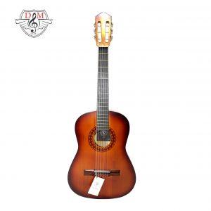 گیتار دلشاد 3 jpg3