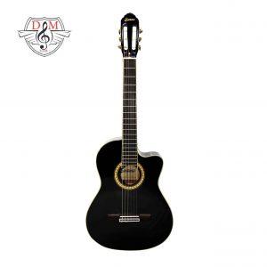 گیتار سانتانا مشکی کاتوی jpg3