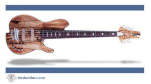 معرفی بخش های مختلف انواع گیتار